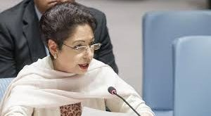 India is trampling human rights in Occupied Kashmir unhindered: Maleeha Lodhi