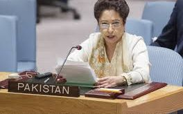 Pakistan seriously  threatened by cross-border terrorists support, Maleeha Lodhi