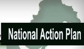 Efforts underway for implementation of NAP: DC
