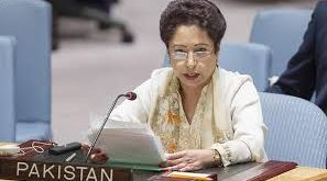 UN should benefit from experiments of countries that send  peace keeping troops: Dr Meleeha Lodhi