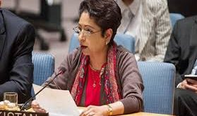 Pakistan presents 6 point  mechanism in UN against Islamophobia