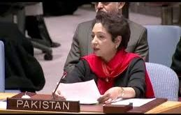 Pakistan is among major countries providing peace keeping contingents since 6 decades: Dr Maleeha Lodhi