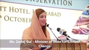 Violators of ban on shopping bags will be dealt with sternly: Zartaj Gul
