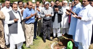 "PARC observed ""Plant for Pakistan Day"""