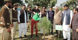 Commissioner Rwp kick starts 'Plant for Pakistan' campaign