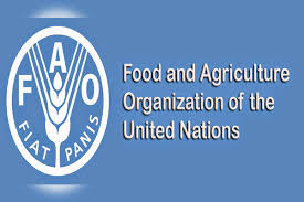 Pakistan ready to combat impending attack of crop-eating locust: FAO official